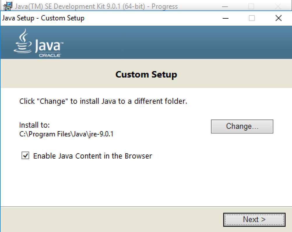 java windows 10 custom setup