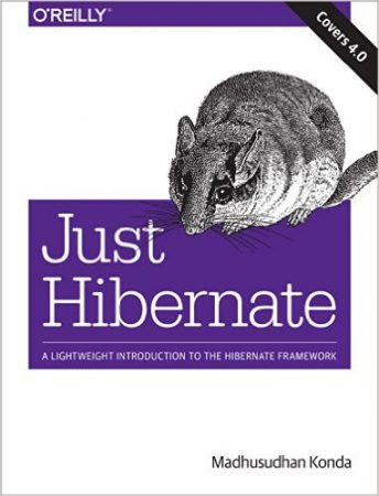 Just Hibernate, hibernate book, best hibernate books