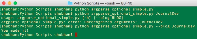 Python argparse Optional argument