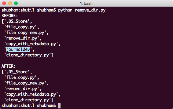 python shutil Remove file and directory tree