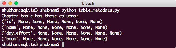 python sqlite3 column_info Metadata of a Table