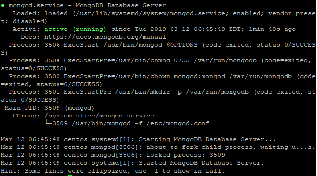 Verify Status of Mongod daemon