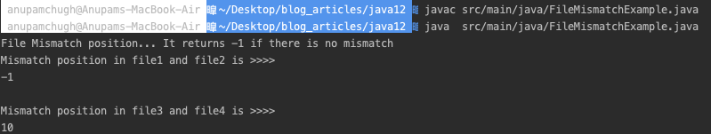 Java File Mismatch Example Program Output