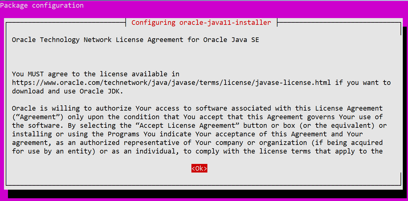 Accept Oracle License Aggrement
