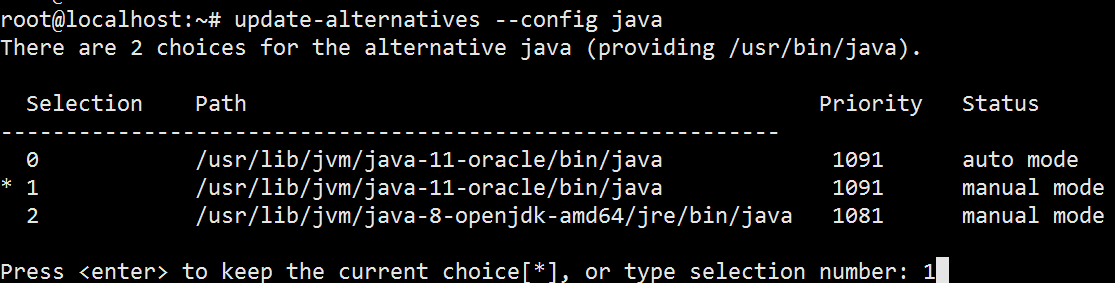 Update Alternative Configure Java