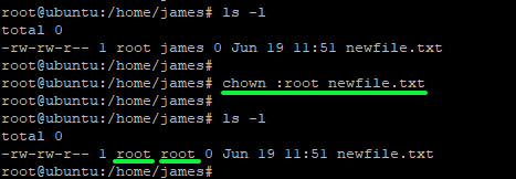 Change Group using chown command