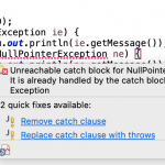 Java Try Catch Example