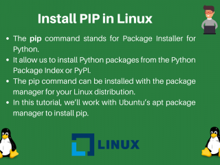 Install Pip In Linux