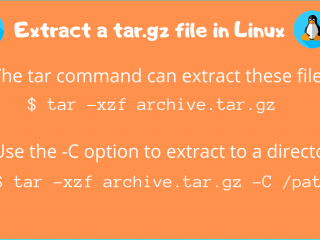 Extract Tar Gz File