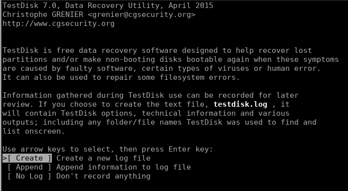 Testdisk Welcome Screen Log