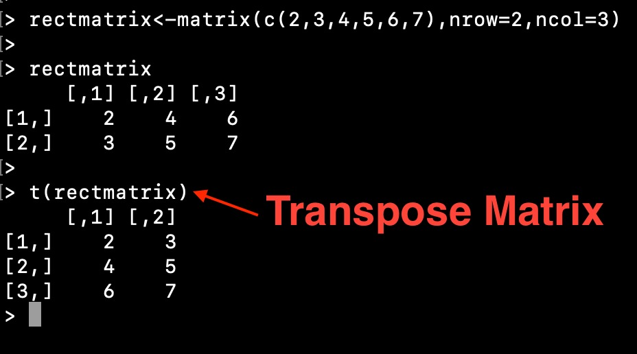 Transpose Matrix In R