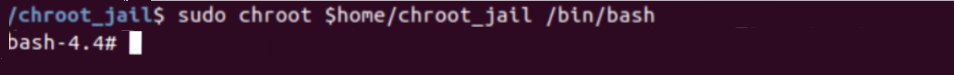 Chroot Jail Execute