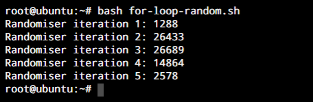For Loop Randomizer
