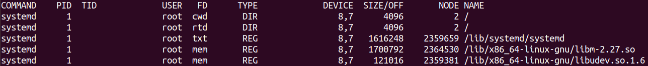 Default output of the lsof command in Linux