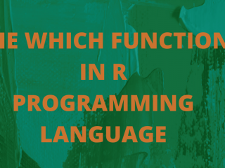 THE WHICH FUNCTION IN R PROGRAMMING LANGUAGE
